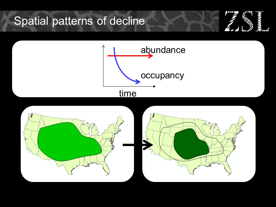 Spatial patterns of decline time abundance occupancy