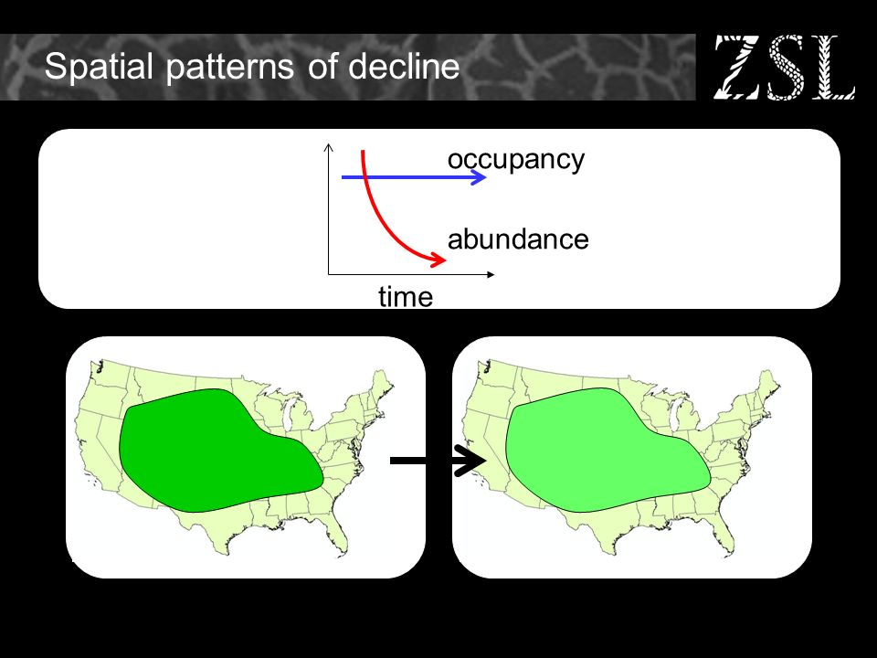 Spatial patterns of decline time occupancy abundance