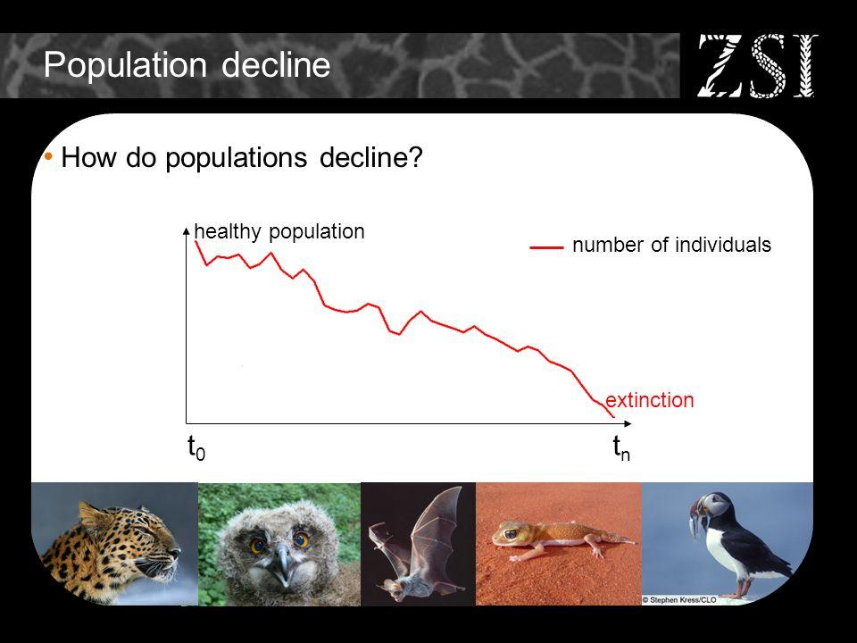 Population decline How do populations decline? t0t0 tntn extinction healthy population number of individuals