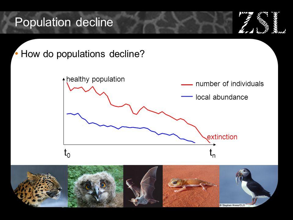 Population decline How do populations decline? t0t0 tntn healthy population extinction number of individuals local abundance