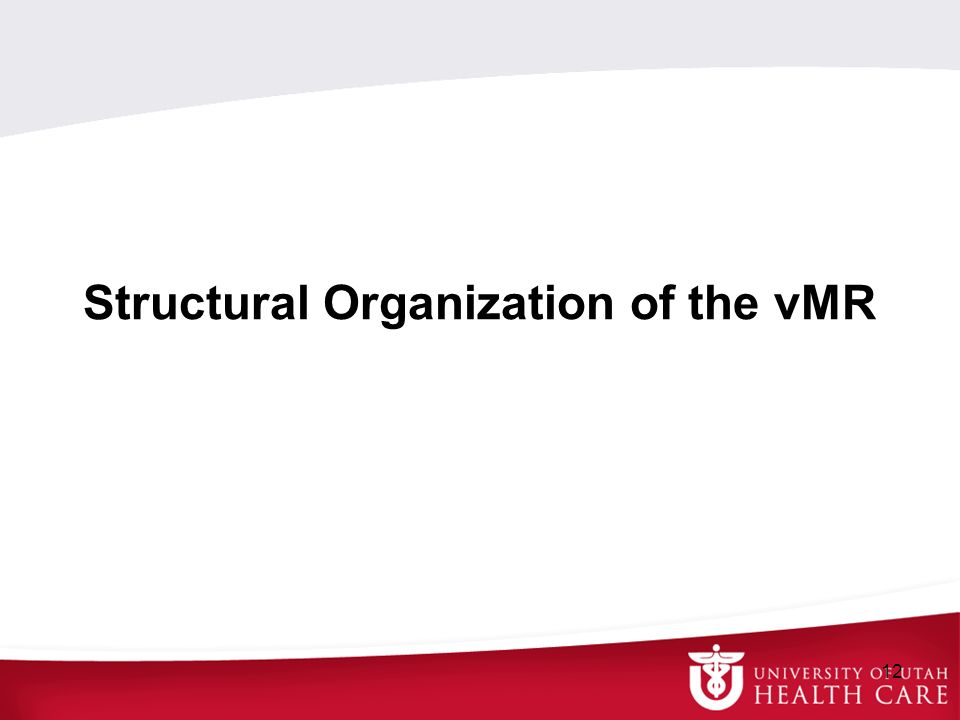 Structural Organization of the vMR 12
