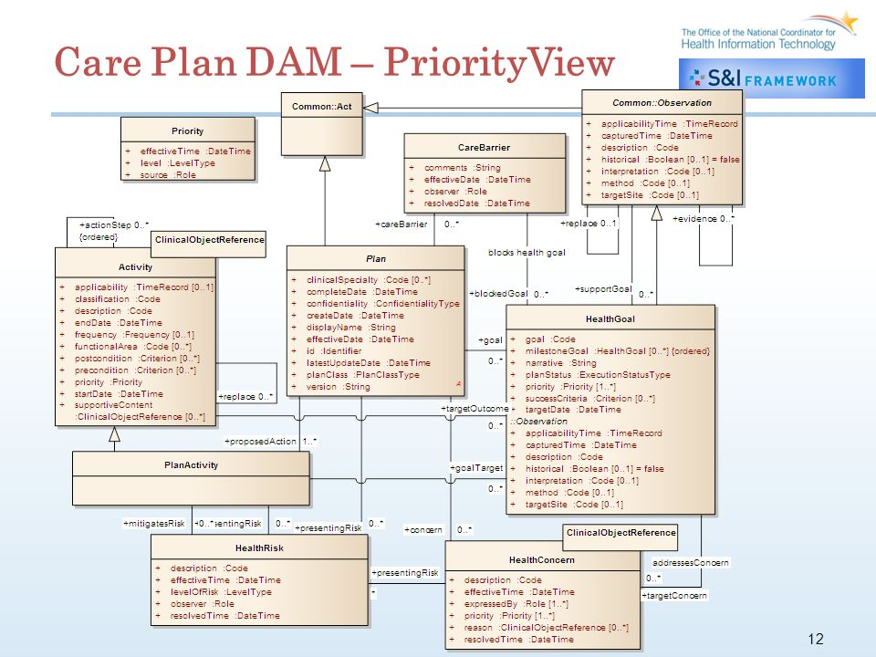 12 Care Plan DAM – PriorityView