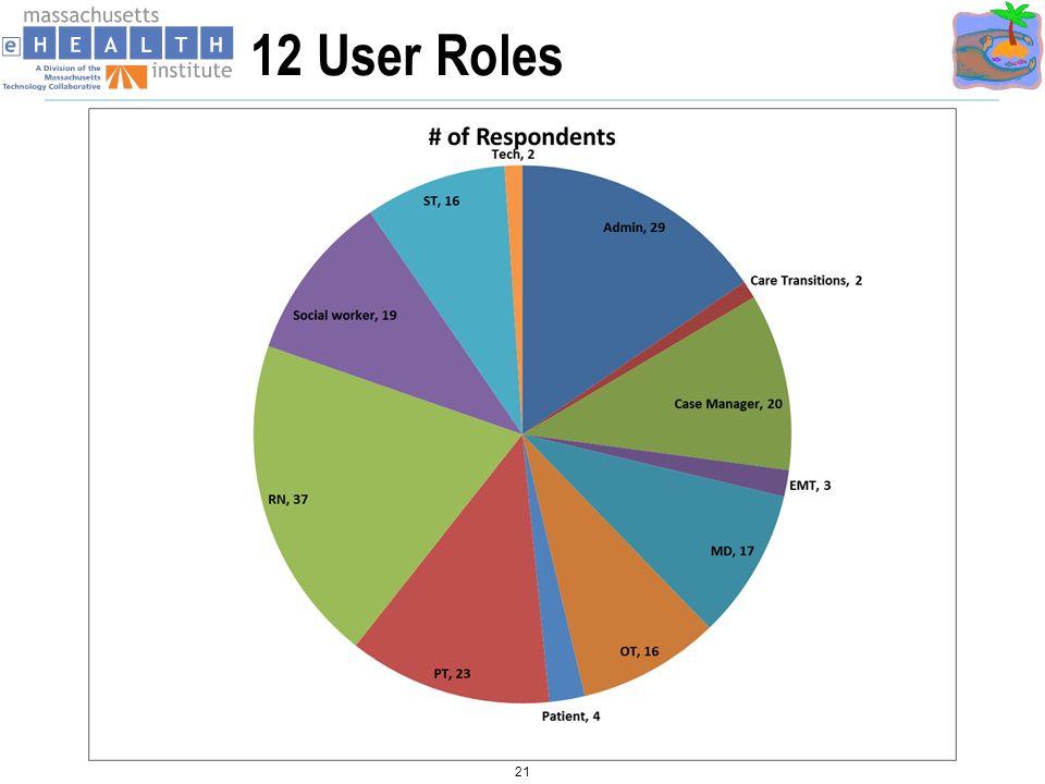 12 User Roles 21