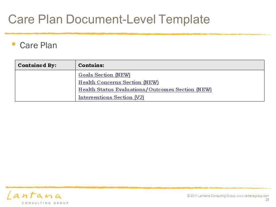 © 2011 Lantana Consulting Group,   28 Care Plan Care Plan Document-Level Template