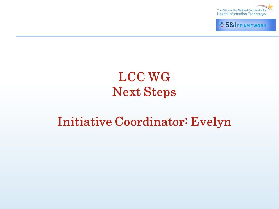 LCC WG Next Steps Initiative Coordinator: Evelyn
