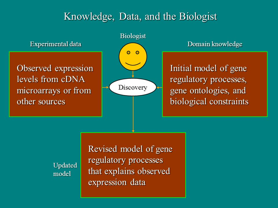 Observed expression Observed expression levels from cDNA levels from cDNA microarrays or from microarrays or from other sources other sources Revised model of gene Revised model of gene regulatory processes regulatory processes that explains observed that explains observed expression data expression data Initial model of gene Initial model of gene regulatory processes, regulatory processes, gene ontologies, and gene ontologies, and biological constraints biological constraints Discovery Domain knowledge Experimental data Updatedmodel Biologist Knowledge, Data, and the Biologist