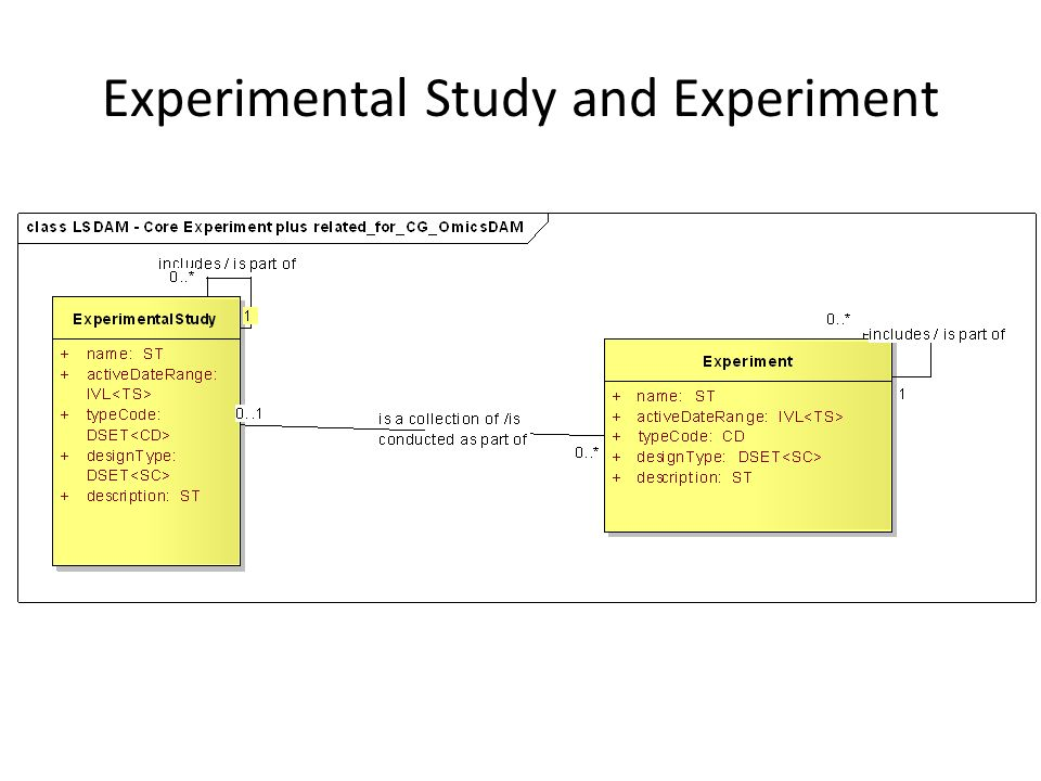 Experimental Study and Experiment