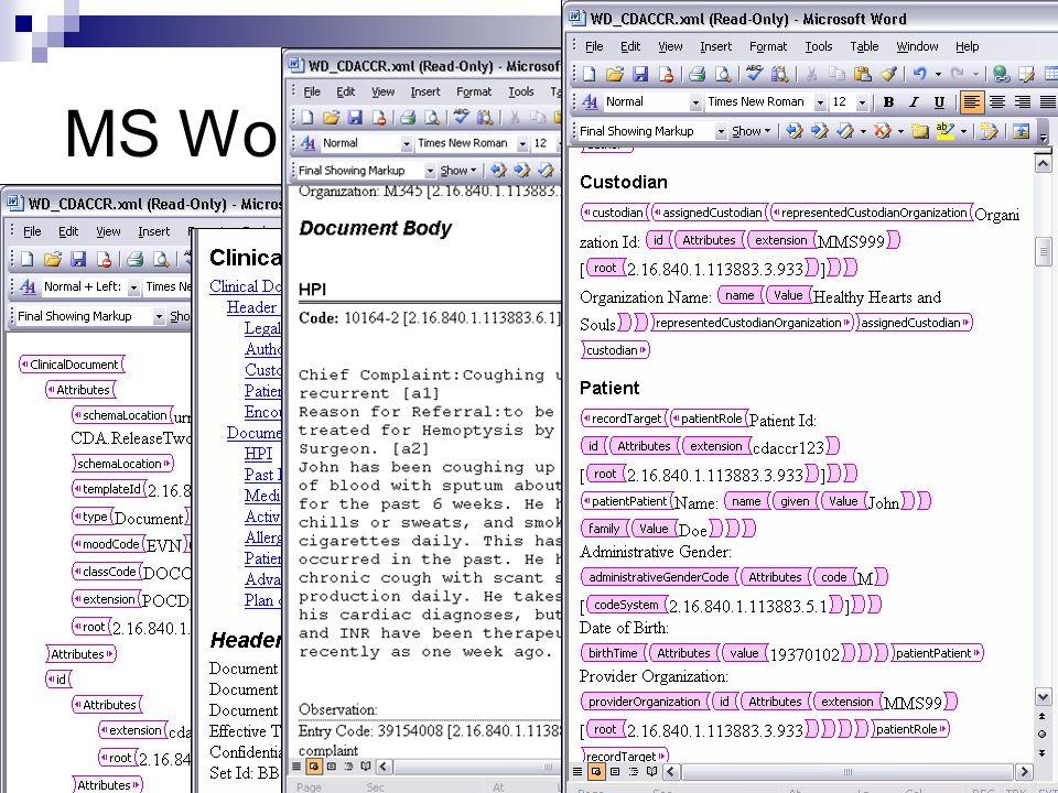 MS Word XML authoring