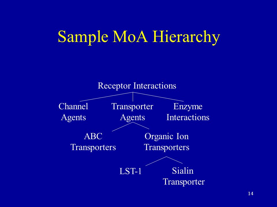 14 Sample MoA Hierarchy Receptor Interactions Enzyme Interactions Transporter Agents Channel Agents ABC Transporters Organic Ion Transporters LST-1 Si