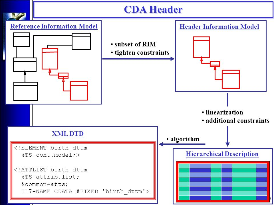 18 Reference Information Model Header Information Model Hierarchical Description <!ELEMENT birth_dttm %TS-cont.model;> <!ATTLIST birth_dttm %TS-attrib.list; %common-atts; HL7-NAME CDATA #FIXED birth_dttm > XML DTD subset of RIM tighten constraints linearization additional constraints algorithm CDA Header