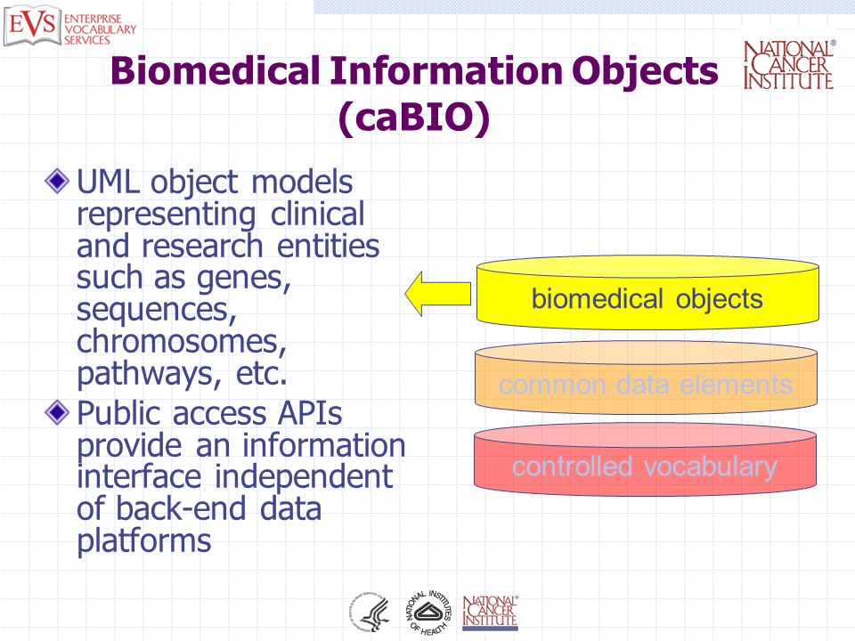 Biomedical Information Objects (caBIO) UML object models representing clinical and research entities such as genes, sequences, chromosomes, pathways,
