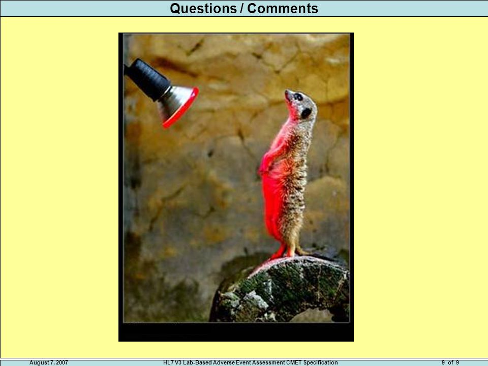 August 7, 2007HL7 V3 Lab-Based Adverse Event Assessment CMET Specification9 of 9 Questions / Comments
