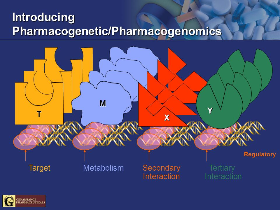 Introducing Pharmacogenetic/Pharmacogenomics Regulatory T M X Y T M X Y Target Metabolism Secondary Interaction Tertiary Interaction