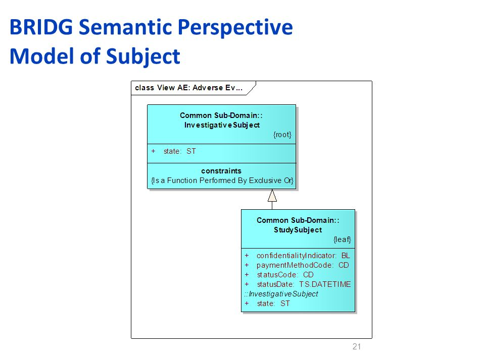 BRIDG Semantic Perspective Model of Subject 21