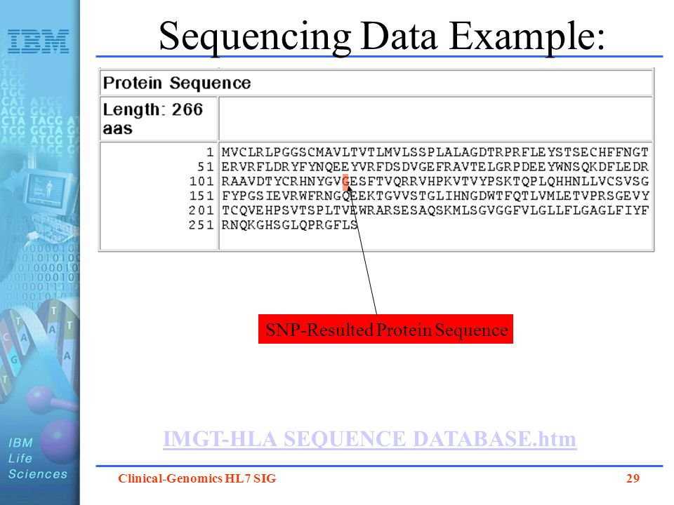 Clinical-Genomics HL7 SIG 29 Sequencing Data Example: IMGT-HLA SEQUENCE DATABASE.htm SNP-Resulted Protein Sequence