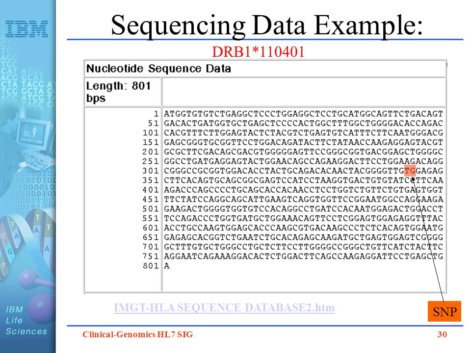 Clinical-Genomics HL7 SIG 30 Sequencing Data Example: IMGT-HLA SEQUENCE DATABASE2.htm DRB1*110401 SNP
