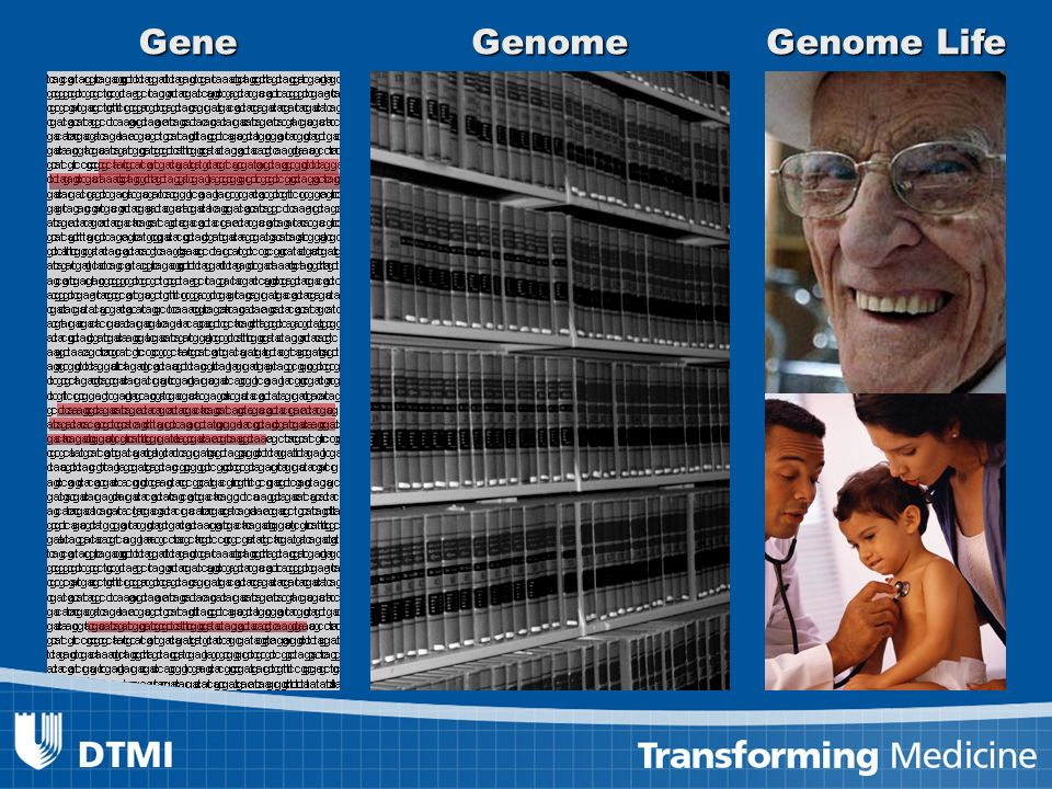 26GenomeGene Genome Life