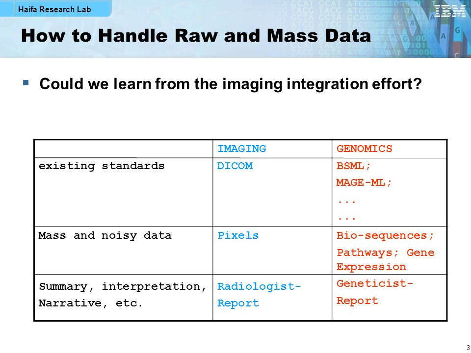 Haifa Research Lab 3 How to Handle Raw and Mass Data Could we learn from the imaging integration effort.