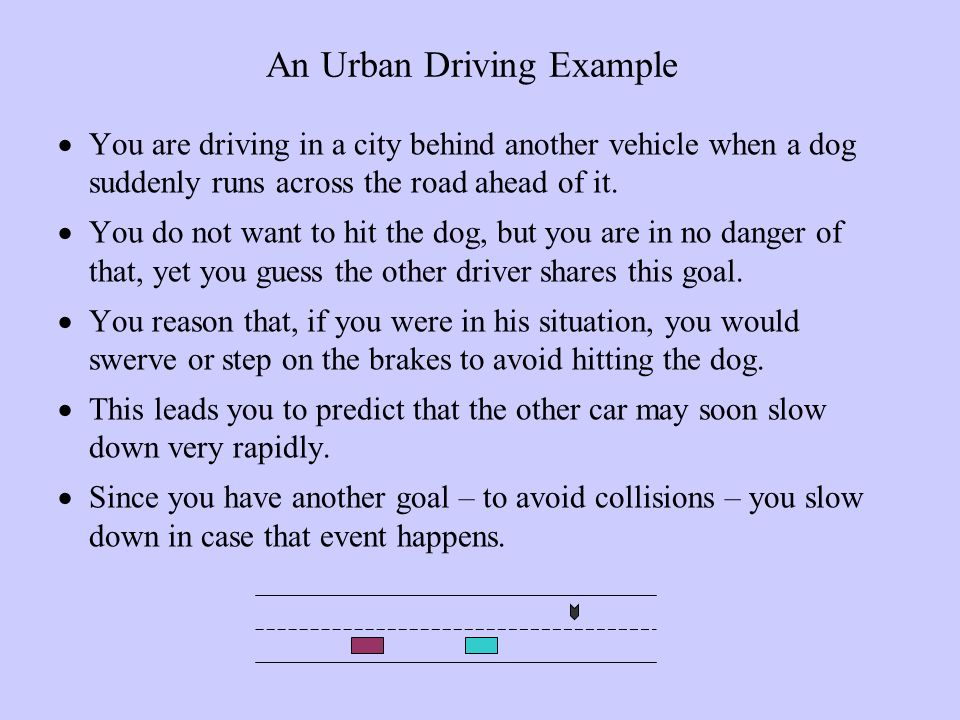 An Urban Driving Example You are driving in a city behind another vehicle when a dog suddenly runs across the road ahead of it.