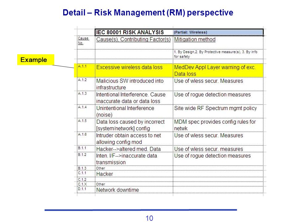 10 Detail – Risk Management (RM) perspective Example