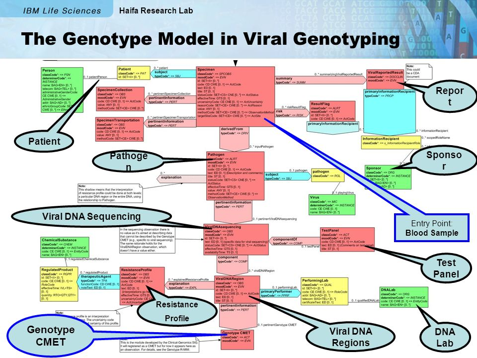 Haifa Research Lab The Genotype Model in Viral Genotyping Entry Point: Blood Sample Pathoge n Patient Viral DNA Sequencing Viral DNA Regions Genotype CMET DNA Lab Test Panel Sponso r Repor t Resistance Profile