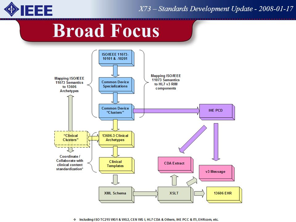 Broad Focus X73 – Standards Development Update - 2008-01-17