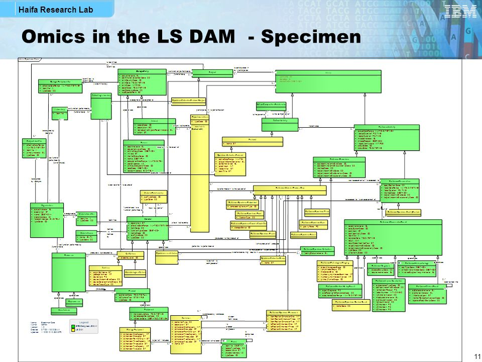 Haifa Research Lab 11 Omics in the LS DAM - Specimen