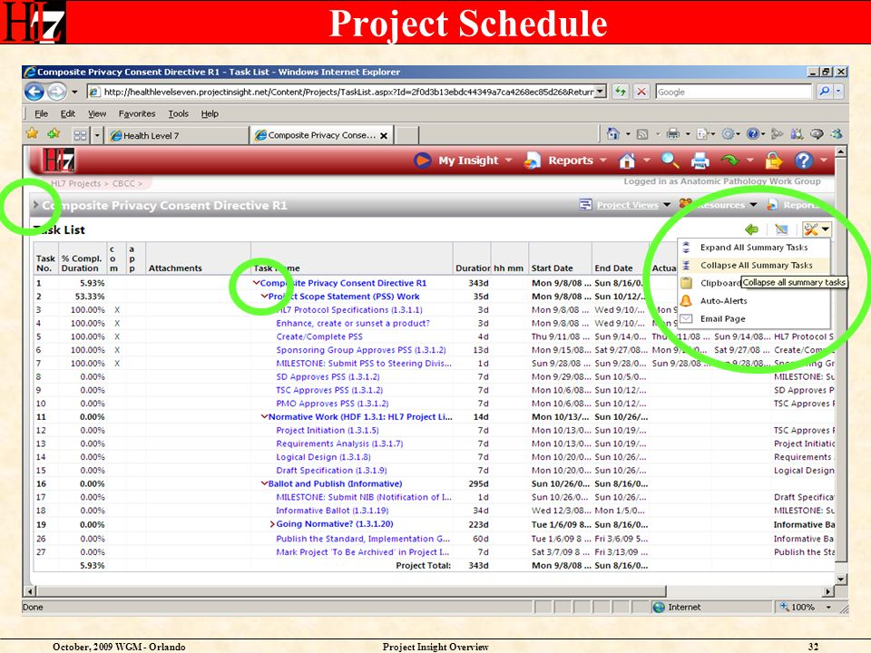 October, 2009 WGM - OrlandoProject Insight Overview32 Project Schedule
