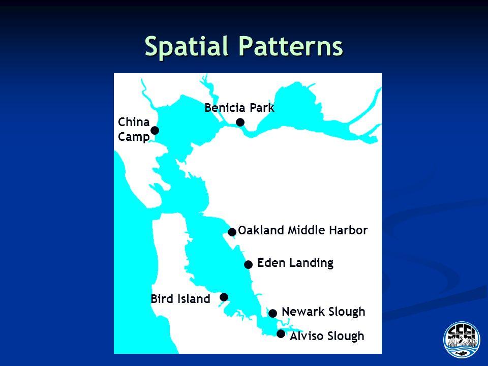 Spatial Patterns Alviso Slough Newark Slough Bird Island Eden Landing Oakland Middle Harbor China Camp Benicia Park