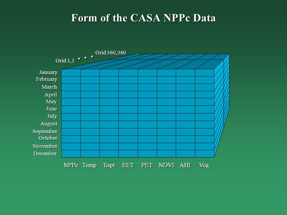 Form of the CASA NPPc Data TempNPPcToptEETPETNDVIAHIVeg January February March May April June July August September November October December Grid 1,1...