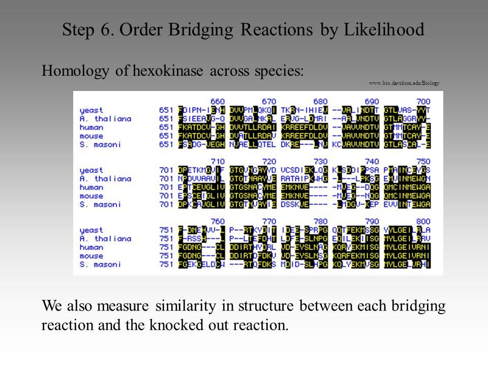 www.bio.davidson.edu/Biology Step 6. Order Bridging Reactions by Likelihood Homology of hexokinase across species: We also measure similarity in struc