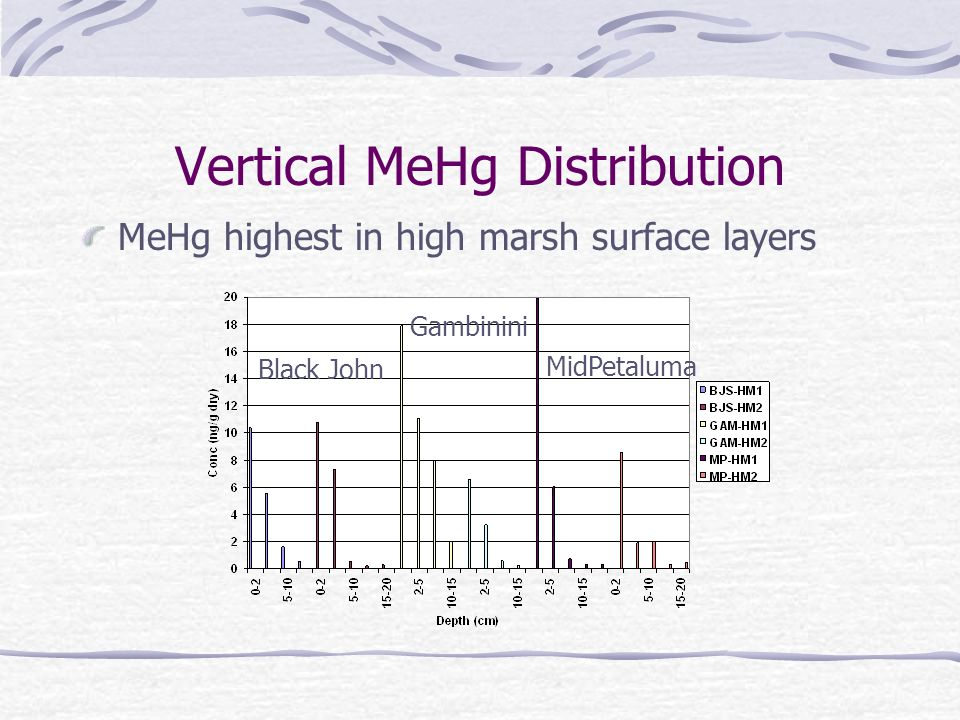 Vertical MeHg Distribution MeHg highest in high marsh surface layers Black John Gambinini MidPetaluma