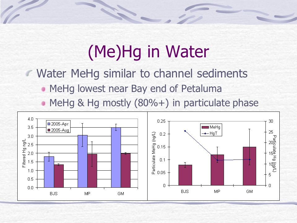 (Me)Hg in Water Water MeHg similar to channel sediments MeHg lowest near Bay end of Petaluma MeHg & Hg mostly (80%+) in particulate phase