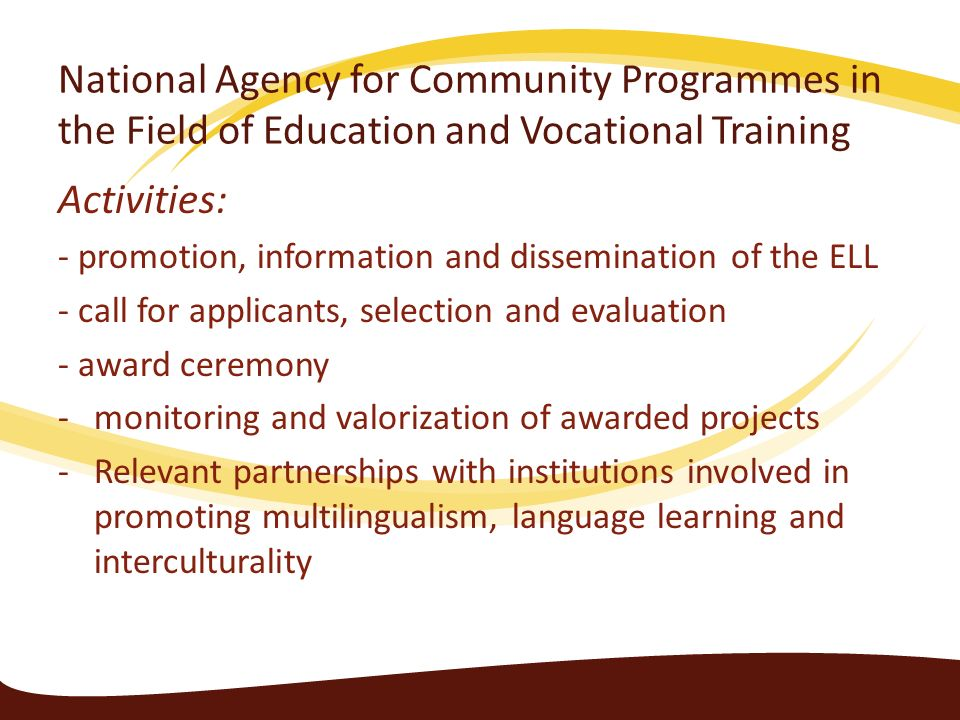 National Agency for Community Programmes in the Field of Education and Vocational Training Activities: - promotion, information and dissemination of t
