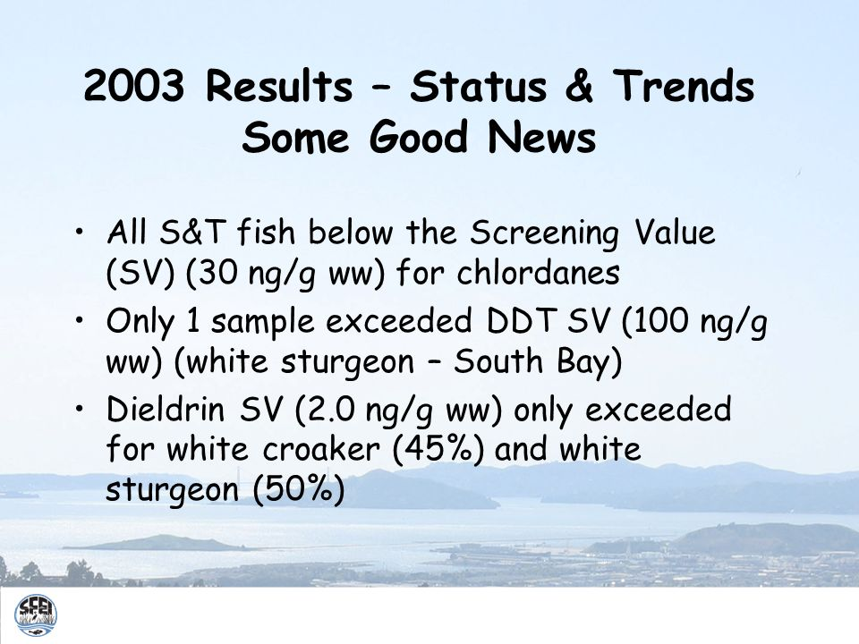 2003 Results – Status & Trends Some Good News All S&T fish below the Screening Value (SV) (30 ng/g ww) for chlordanes Only 1 sample exceeded DDT SV (100 ng/g ww) (white sturgeon – South Bay) Dieldrin SV (2.0 ng/g ww) only exceeded for white croaker (45%) and white sturgeon (50%)