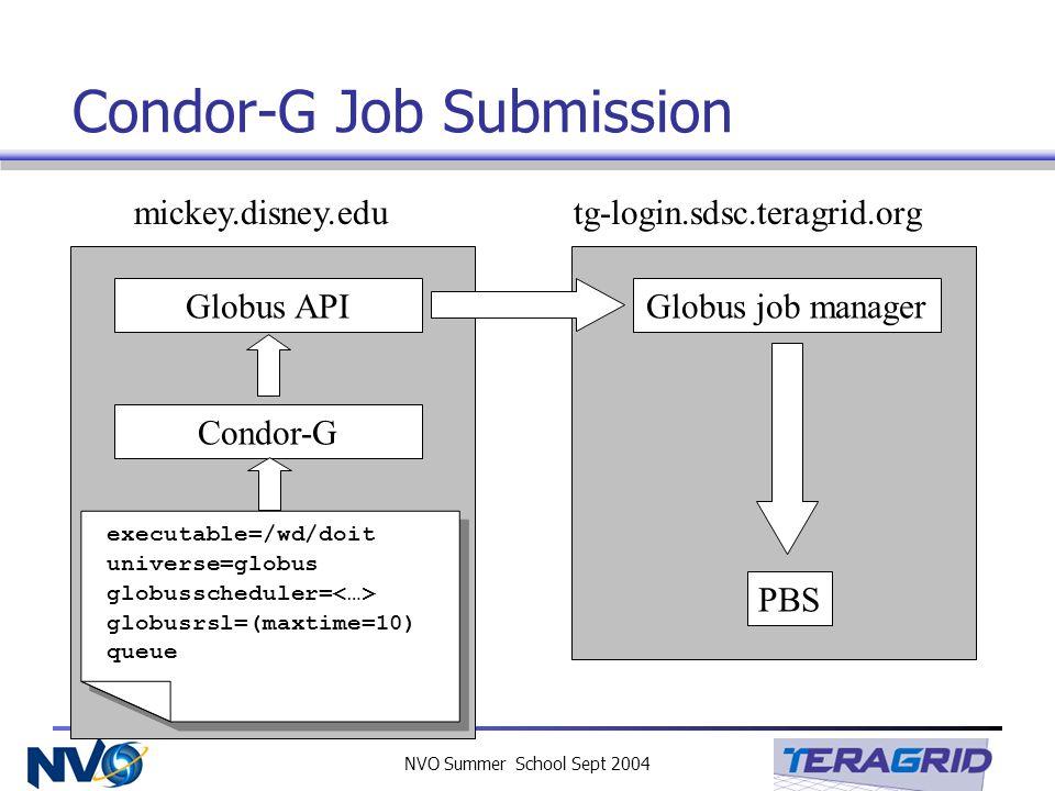 NVO Summer School Sept 2004 Condor-G Job Submission tg-login.sdsc.teragrid.org PBS Globus job manager mickey.disney.edu Globus API Condor-G executable