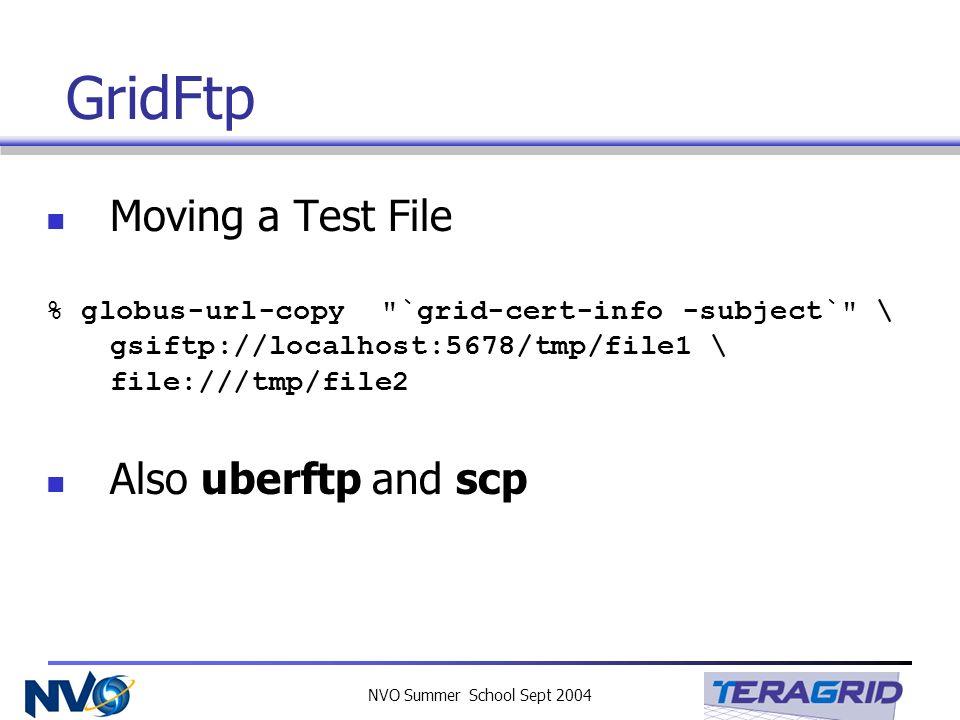 NVO Summer School Sept 2004 GridFtp Moving a Test File % globus-url-copy