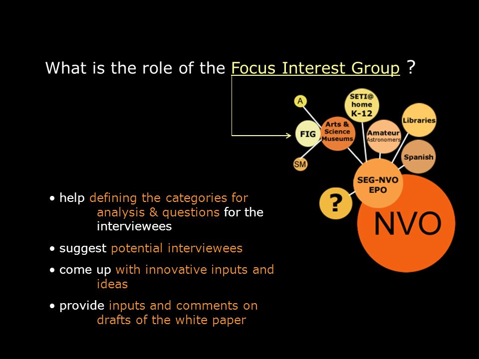 What is the role of the Focus Interest Group .