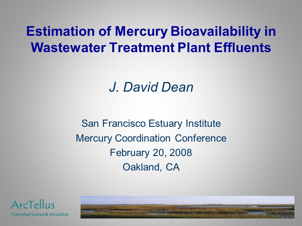 Estimation of Mercury Bioavailability in Wastewater Treatment Plant Effluents J.