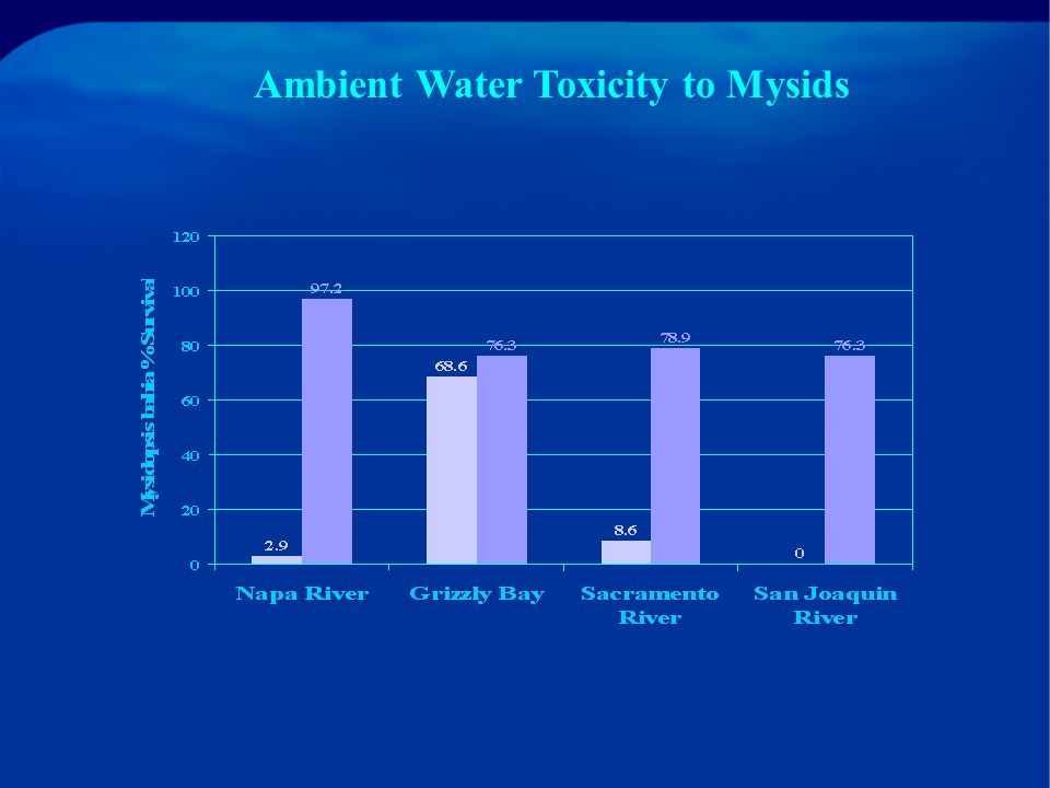 RMP Status & Trends Monitoring 1997 (Year Five): Ambient water samples were collected from 13 stations in February and September 2 Toxicity Tests: Bivalve embryo test w/ Mytilus and Crassostrea 7-day Mysid survival test with Americamysis bahia Results: Significant toxicity to mysid at the Napa River, Grizzly Bay, and Sacramento and San Joaquin River stations!