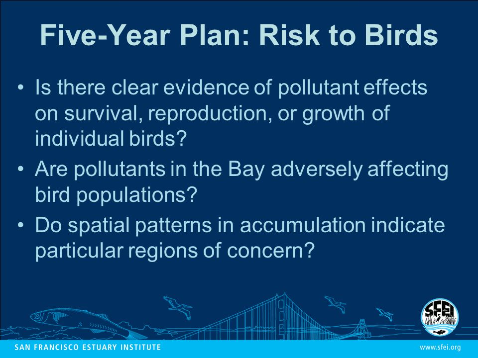 Five-Year Plan: Risk to Birds Is there clear evidence of pollutant effects on survival, reproduction, or growth of individual birds.