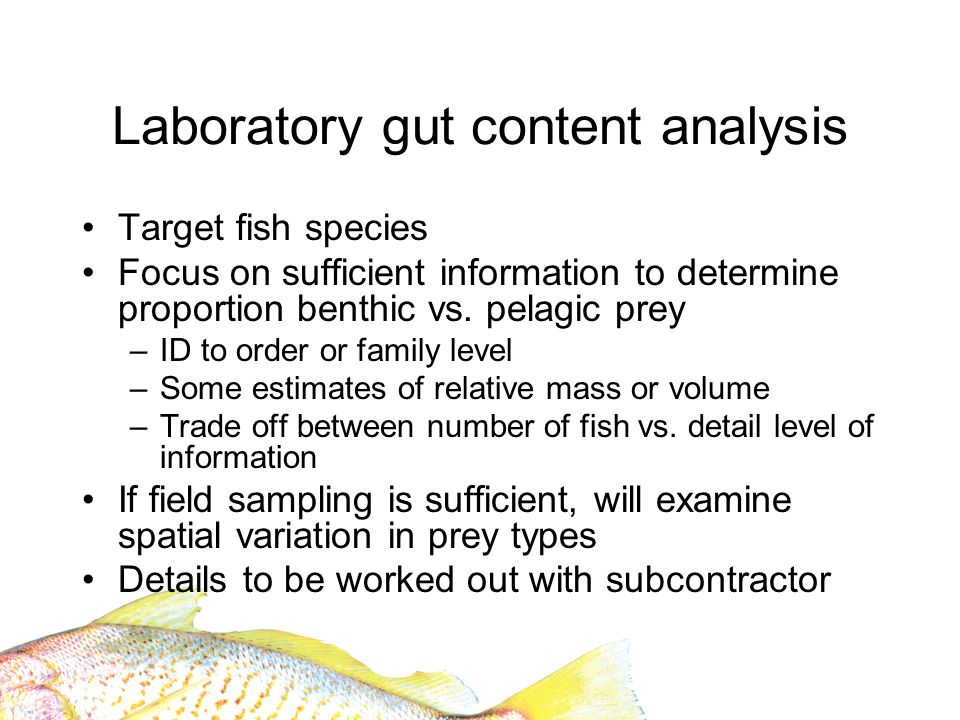 Laboratory gut content analysis Target fish species Focus on sufficient information to determine proportion benthic vs. pelagic prey –ID to order or f