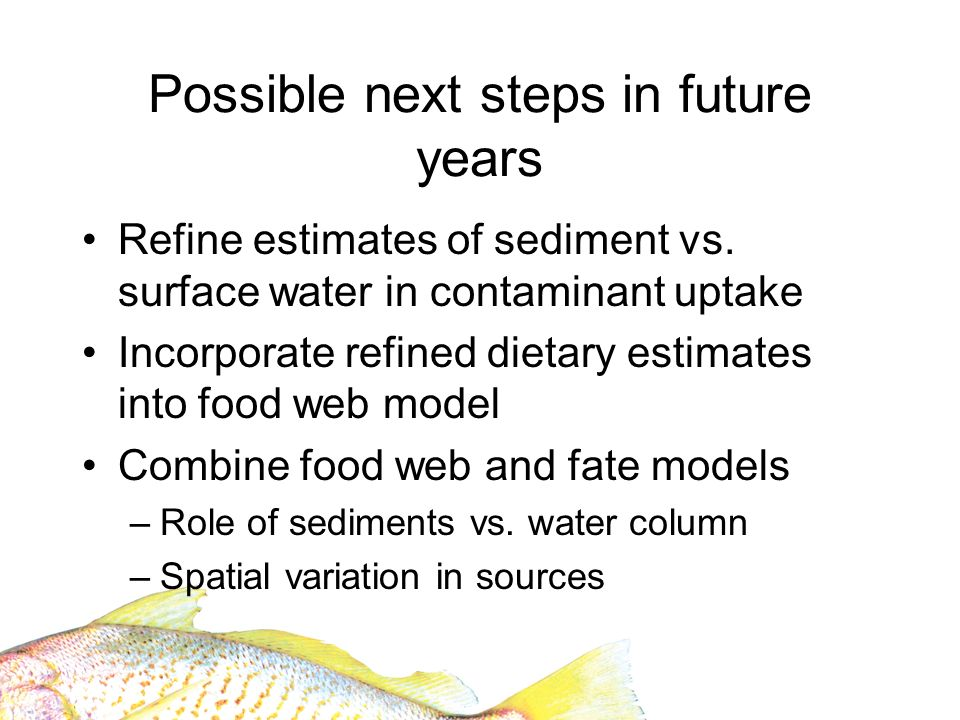 Possible next steps in future years Refine estimates of sediment vs. surface water in contaminant uptake Incorporate refined dietary estimates into fo