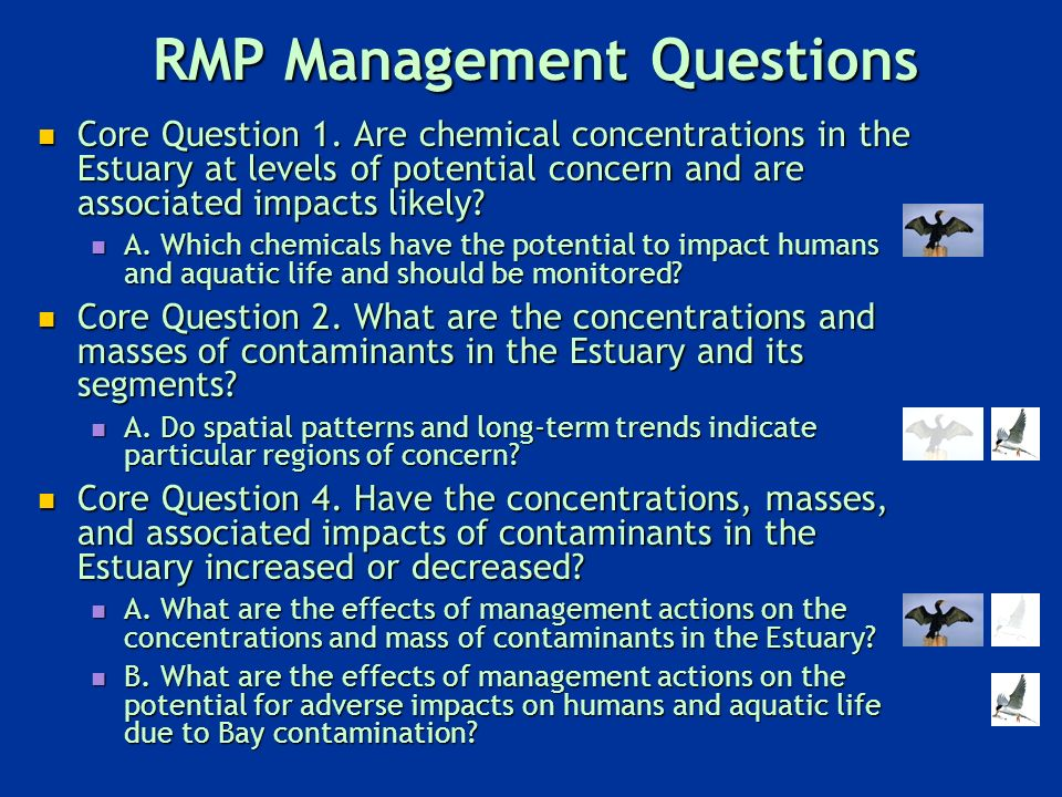 RMP Management Questions Core Question 1.