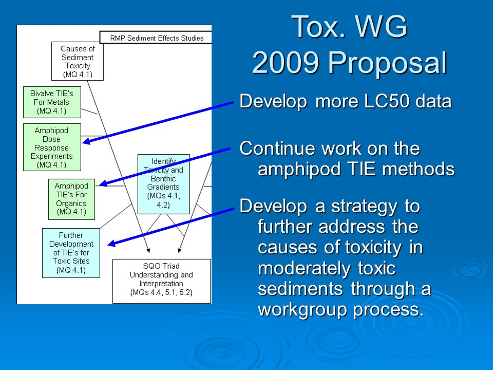Tox. WG 2009 Proposal Develop more LC50 data Continue work on the amphipod TIE methods Develop a strategy to further address the causes of toxicity in