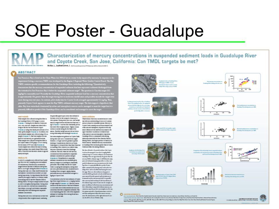 SOE Poster - Guadalupe