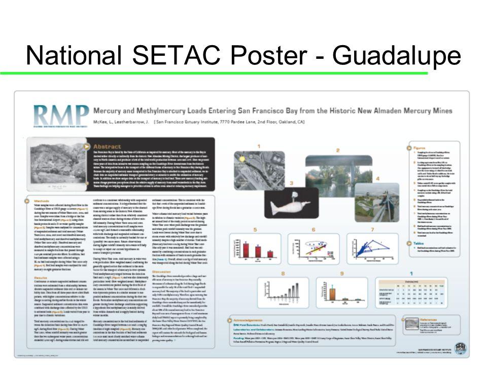 National SETAC Poster - Guadalupe