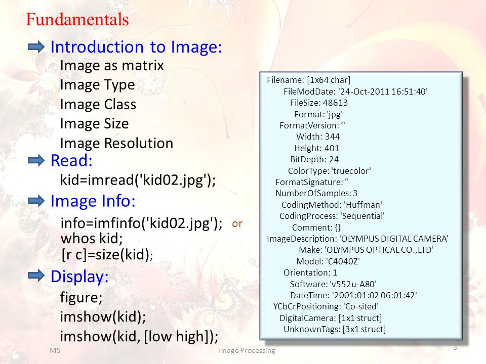 Fundamentals Read: kid=imread('kid02.jpg'); Display: figure; imshow(kid); imshow(kid, [low high]); Image Info: info=imfinfo('kid02.jpg'); or whos kid;
