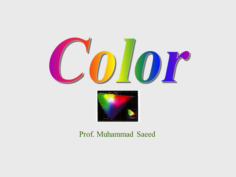 Prof. Muhammad Saeed