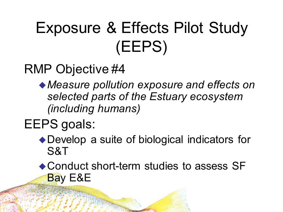 EEPS: Selection of Indicators Rationale presented in Conceptual Framework (Hunt et al., 2004) Fish Clapper rails Benthos/ sediment Terns Cormorants